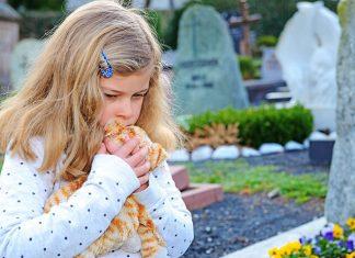 çocuklarda ölüm kavramı
